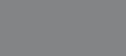 carnegiex logo